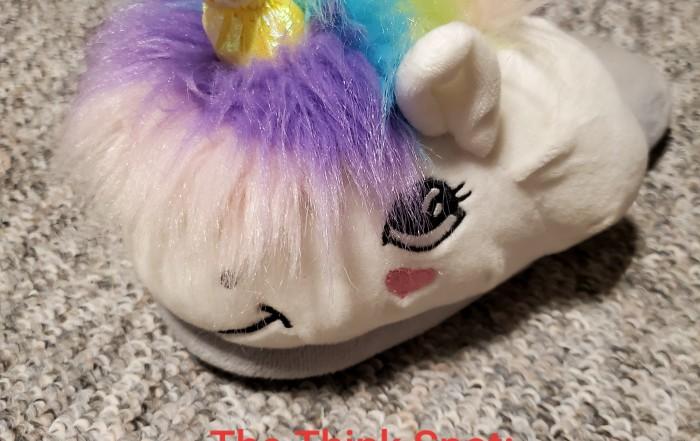 Photo by Pastor Bo Wagner of a unicorn slipper