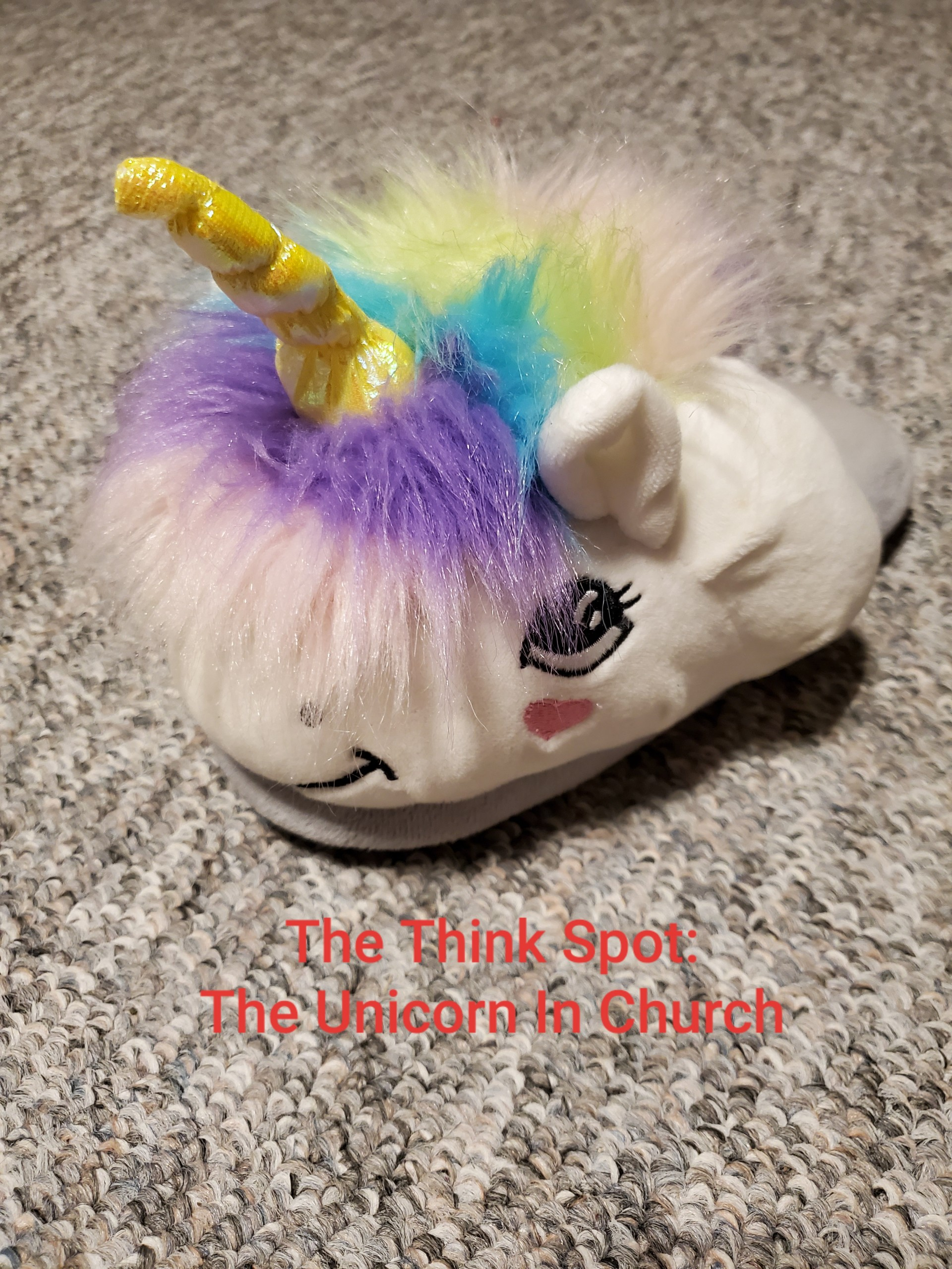 Photo by Pastor Bo Wagner of a unicorn slipper