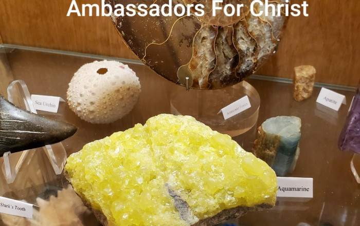 Photo of rocks and minerals in a display case, by Pastor Bo Wagner