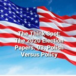 The 2020 Election Papers by Bo Wagner. 03, Polish Versus Policy