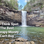 The Best Therapy Money Can't Buy